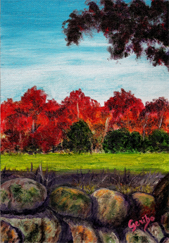fall-in-nh-country-painting-by-dj-geribo.jpg