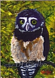 Spectacled Owl Painting by DJ Geribo