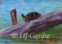 Daily Paintings - Animals by artist DJ Geribo - Heads Up Turtle
