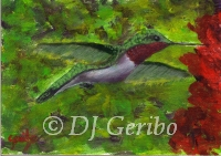 Daily Paintings - Animals by artist DJ Geribo - Ruby Throated Hummingbird