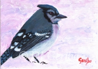 Daily Paintings - Animals by artist DJ Geribo - Winter Bluejay