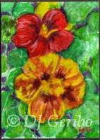 Pretty Pansies - Painting by artist DJ Geribo