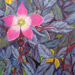 Orignal Painting by artist DJ Geribo - Old Fashioned Rose Bloom
